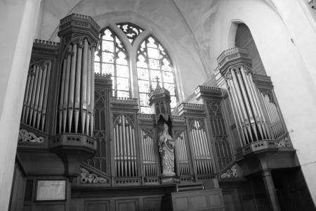 Het orgel in de st Catherine Kathedraal